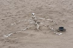 Human skeleton built from animal bones on the Skeleton Coast in Namibia.  Stock Photography