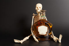 Human skeleton with cognac, brandy bottle Stock Photography