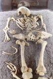 Human skeleton. A human skeleton from Corvin castle, Hunedoara royalty free stock photos