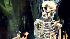 Skeleton on Fire. Human Skeleton on Fire in the Forest. Halloween Background - HD Video stock video