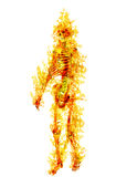 Human skeleton in flame on isolated on white Stock Photography