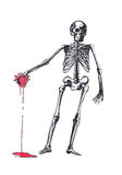 Human skeleton with a heart on his hand Royalty Free Stock Images