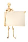 Human skeleton holding sign. Full human skeleton holding sign for copyspace, isolation on white background stock images