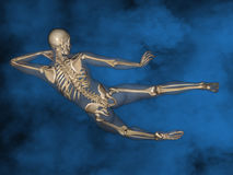 Human skeleton M-SK-POSE Vfm-1-10, 3D Model. Human Poses, Human Skeleton, Blue Background Royalty Free Stock Images