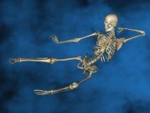 Human skeleton M-SK-POSE Vfm-1-1, 3D Model. Human Poses, Human Skeleton, Blue Background Royalty Free Stock Photography