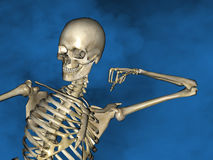 Human skeleton M-SK-POSE Vfm-1-2, 3D Model. Human Poses, Human Skeleton, Blue Background Stock Images
