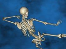 Human skeleton M-SK-POSE Vfm-1-4, 3D Model. Human Poses, Human Skeleton, Blue Background Royalty Free Stock Photo