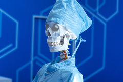 Human skeleton in medical dressing gown on blue bacground. Stock Photo