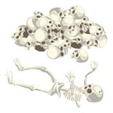 Human skeleton and pile of skulls. Vector  Stock Image