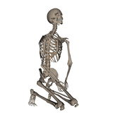 Human skeleton praying on his knees - 3D render Stock Photography