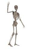 Human skeleton saying goodbye - 3D render Royalty Free Stock Images