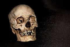 Human skeleton skull head on black stock photography