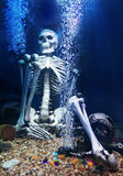 Human Skeleton under water. Among the treasures on the ocean floor Royalty Free Stock Image