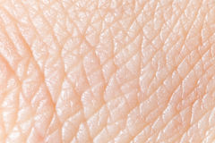 Human skin. Super macro texture Royalty Free Stock Images