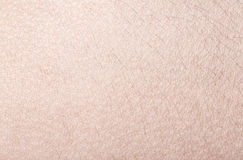 Human skin close up. Structure of Skin Stock Photo