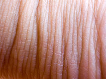 Human skin closeup background. Royalty Free Stock Photo