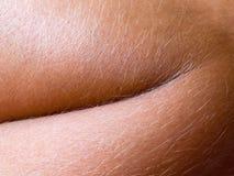Human skin closeup background. Stock Image