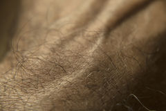 Human skin. Detail of the human hand skin Royalty Free Stock Image