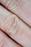 Human skin macro Stock Image