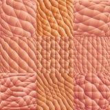 Human skin macro. Vector. Human skin macro seamless patterns set Stock Photo