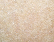 Human Skin Texture Royalty Free Stock Photography
