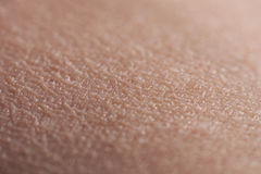 Human Skin Upper Arm Royalty Free Stock Photos