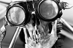 Human skull royalty free stock photography