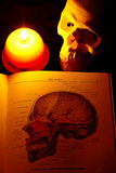 Human skull. With the schoolbook and the candle Stock Photo