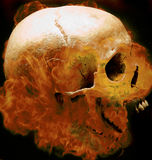 Human skull. Photographic composition: human skull with fire Royalty Free Stock Photos