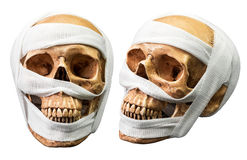 Human skull with bandage Royalty Free Stock Photography