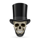 Human skull with beard and hat on Stock Photos