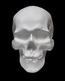 Human skull on black background Royalty Free Stock Image