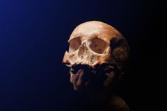 Human skull on a black background. flare effect Royalty Free Stock Image