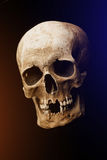 Human skull on a black background. flare effect Royalty Free Stock Photo