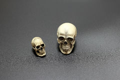 Human skull on black background of surface sand, still life style. Stock Photo
