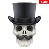 Human skull with black cylinder hat. Vector Illustration on  white background Stock Photos