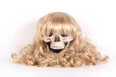 Human skull with blond hair Stock Photography
