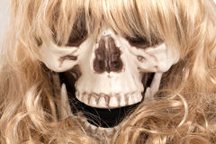 Human skull with blond hair Royalty Free Stock Photography
