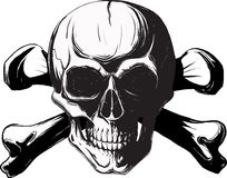 Human skull and bones. Pirate symbol isolated on a white background vector illustration