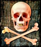 Human skull and bones, background. Human skull and bones on the background of an old wooden board royalty free stock photography