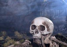 Human Skull and Bones Royalty Free Stock Photo