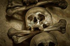 Human Skull And Bones Royalty Free Stock Image