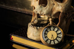 Human skull on a book next to the clock. concept Stock Images