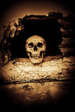 Human skull on breaking concrete wall Stock Photography
