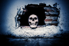 Human skull on breaking concrete wall Stock Photo