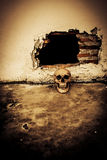Human skull on breaking concrete wall Royalty Free Stock Image