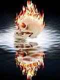 The human skull burning in the fire Royalty Free Stock Photography