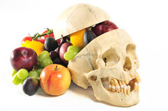 Human skull cornucopia Royalty Free Stock Images
