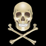 Human Skull and crossbones Stock Photography