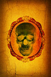 Human skull in the design background Royalty Free Stock Photo